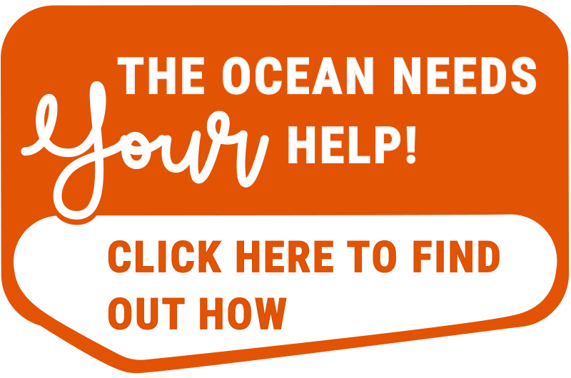 The ocean needs your help